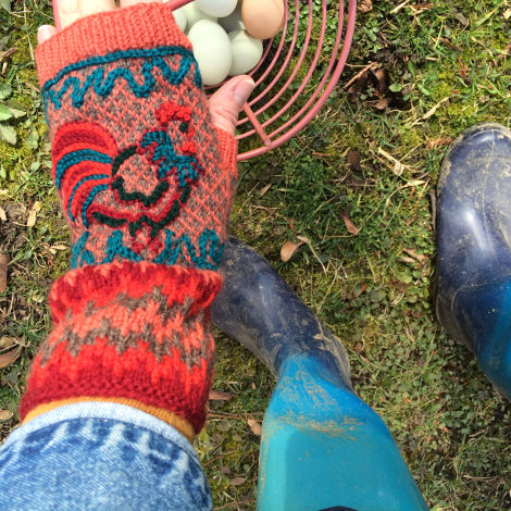 Colorwork and Chooks come together in perfect harmony